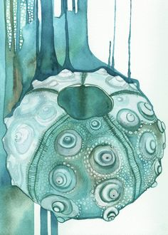 4 Prints SEA SHELL set in turquoise four 5x7 by DeepColouredWater
