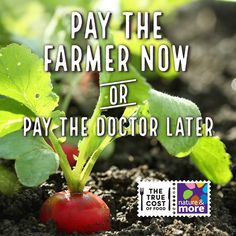 You always have a choice ...  #organic #truecostoffood