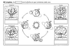 Teaching Science, Science For Kids, Earth Science, Social Science, Science And Nature, Winter Activities, Activities For Kids, Four Seasons Art, Colegio Ideas