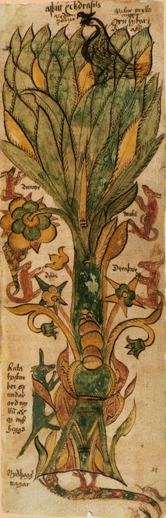 The Cosmic Tree Yggdrasill, as depicted in a 17th century Icelandic miniature, from Wikipedia