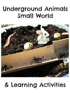 Three ideas for learning about underground animals: small world play, cardboard tunnels and burrows, and letter U craft. Project Based Learning, Fun Learning, Learning Activities, Activities For Kids, Preschool Ideas, Preschool Programs, Preschool Science, Autumn Activities, Teaching Ideas