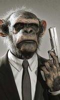 Creepy monkey hitman.