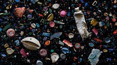 Beautiful Photos Of The Ocean's Deadly Plastic    Soup is a photo series that…