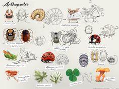 Arthropoda icon Series from Pigsell.com 2004
