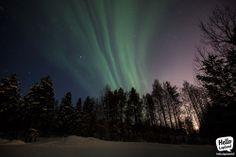 Aurora Borealis display 19.2.2014 in Rovaniemi, Lapland, Finland.