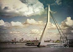 Image Shows, Rotterdam, Bridges, Beverly Hills, San Francisco Skyline, Netherlands, Instagram Images, Wall Art, City