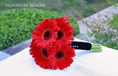 Red Gerbera Daisy Wedding Bouquet. I like the black centers; they match my wedding colors.