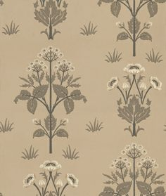 Meadow Sweet (210351) - Morris Wallpapers - A reinterpretation of this pretty classic floral motif design, with a delicate symmetry. Shown in the delicious shades of pale chocolate brown – available in other colours. Please request sample for true colour match.