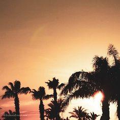 🌍 REISEN IST DER SCHÖNSTE WEG,  UM GELD AUSZUGEBEN UND TROTZDEM REICHER ZU WERDEN. 🌍 . 2019 ist was Reisen angeht auf jeden Fall das Jahr unseres Lebens.👨👩👧👦 Clouds, Celestial, Sunset, Outdoor, Instagram, Earth, Traveling, Nice Asses, Sunsets