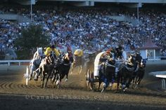 Picture: The Chuck Wagon Race is an exciting event to watch at the Calgary Stampede in Alberta, Canada. Canada North, Canada Eh, Western Canada, Canadian People, Canadian Animals, Canadian Culture, Discover Canada, Chuck Wagon, Canadian Rockies