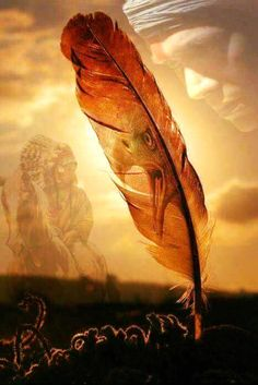 Native American Survival tips that stand up the test of time for hundreds of years and able to fight every hurdles nature hurled at them. The total guide to teaching you food hunting,fishing, fighting, making survival tools, medical healings and more. Native American Prayers, Native American Spirituality, Native American Warrior, Native American Paintings, Native American Wisdom, Native American Pictures, Eagle Pictures, Indian Pictures, Native Indian