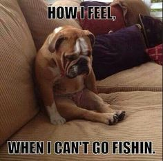 How I feel when I can't go fishing
