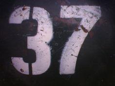 Numbers 37, Portland Oregon USA