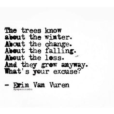QUOTE, Perspective: 'The trees know about the winter. About the change. About the falling. About the loss. And they grew anyway. What's your excuse?' / Erin Van Vuren