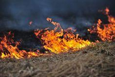 Bush fire South Sudan