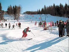 Rece ca IANUARIE  Ski  Poiana Brasov Snowbording Winter