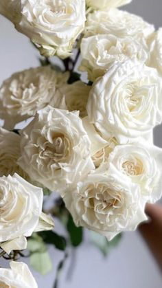 Types Of White Flowers, White Lotus Flower, Types Of Roses, All Flowers, Wholesale Flowers Online, Wholesale Roses, White Spray Roses, White Roses, Summer Wedding Bouquets