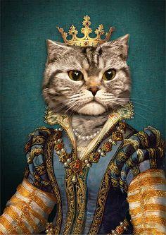 Fancy Cats, Cute Cats, Royal Animals, Cute Cat Illustration, Cat Aesthetic, Jolie Photo, Animal Heads, Cat Tattoo, Cat Drawing