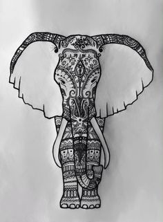 India elephant, drawn and designed by Sophia Moser