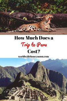 How much does a trip to Peru cost? We're breaking down the cost of visiting Peru including flights to Peru hotels in Peru activities and more! Whether you are a budget backpacker or like to splurge here is the perfect Peru budget! Brazil Travel, Peru Travel, Solo Travel, Hawaii Travel, Italy Travel, South America Destinations, South America Travel, Travel Destinations, Holiday Destinations