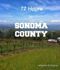 72 Hours in Sonoma Valley in which I detail where to stay, what to do, and where to drink wine. Start here for a guide to Sonoma County.