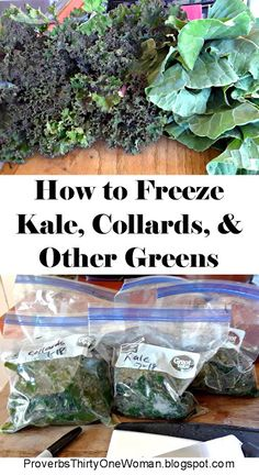 How To Freeze Kale, Collards, and Other Greens (Proverbs 31 Woman) Freezing Vegetables, Freezing Fruit, Canning Vegetables, Frozen Vegetables, Fruits And Veggies, Canning Food Preservation, Preserving Food, Freezer Cooking, Cooking Tips