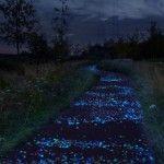 Pedalare su un Van Gogh…