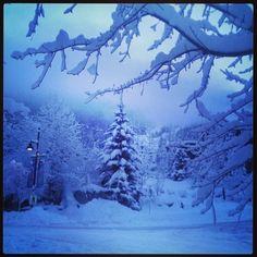 A Creekside Whistler Wonderland! #whistler #winter nitalakelodge's photo on Instagram
