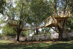 tree house images photos - Google Search