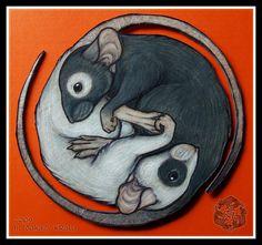 Rat Taijitu by dakazi.deviantart.com on @DeviantArt