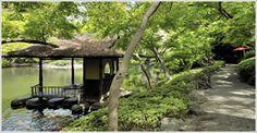 Tokyo Garden: Hapoen. Entra is free. Macha tea Zeremonie available in tea house for 2000Yen (~18€). Needs reservation!