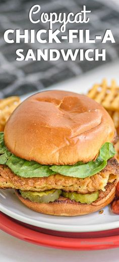 I can't get enough of this copycat chicken sandwich! Made homemade, it is as tender and juicy as the original Chick-fil-a sandwich. Just brine, batter, and fry the spicy chicken and serve on a toasted bun with pickles and your favorite sauce. #centslessmeals #copycatrecipe #chickfilasandwich #maindish #chickenrecipe #fastfood Spicy Chicken Sandwiches, Chicken Sandwich Recipes, Fried Chicken Sandwich, Vegan Sandwiches, Recipe Chicken, Chik Filet, Cooking Recipes, Healthy Recipes, Dishes Recipes