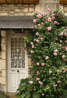 New Pergola Ideas Entrance Climbing Roses Ideas Rose Cottage, Cottage Style, Cottage Door, Beautiful Gardens, Beautiful Flowers, Dream Garden, Home And Garden, Garden Living, Paris Home