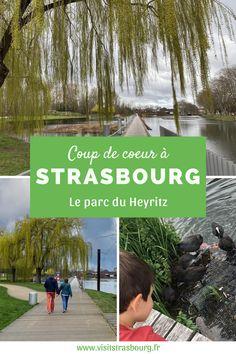 Le parc du Heyritz est un coup de coeur à Strasbourg ! Le parc est tout proche du centre-ville, mais on a la sensation d'être en pleine campagne tellement il y a de verdure, de coins et de recoins… Le terrain vallonné, les nombreux arbres et la proximité de l'eau invitent à la détente et à la déconnexion, en plein cœur de la ville ! Un lieu parfait pour profiter doucement au bord de l'eau.