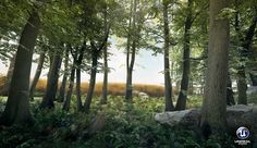 ArtStation - Forest, Martin Ostrolucky