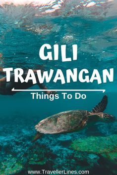 What to do in Gili Trawangan? how do I get from Bali to Gili Trawangan? which Gili island is the party island? To answer all these questions check out this article about the top things to do in Gili Trawangan article. Vacation Places, Places To Travel, Travel Destinations, Places To Go, Stuff To Do, Things To Do, Gili Trawangan, Gili Island, Online Travel