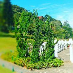 Jardim do Hotel Quitandinha, Petrópolis