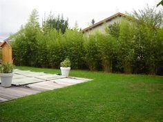 Moroccan Design, Moroccan Decor, Moroccan Interiors, Garden Types, Fence Design, Paths, Pergola, Sidewalk, Backyard