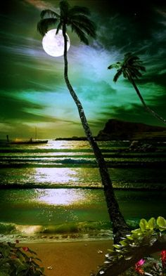 tall, tall palm tree against the soft, romantic moonlight.... ~K8~ More