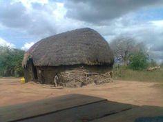 Lungalunga Africia