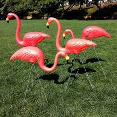 30 Large Pink Yard Flamingos Sold In Bulk for a Pink Flamingo