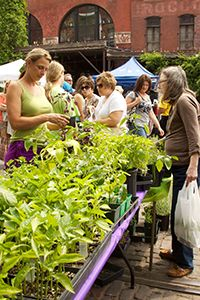 Omaha Farmers Market. Open May 6 - October 15, 2017. Check website for hours and locations