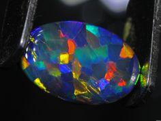 Harlequin black opal gemstone