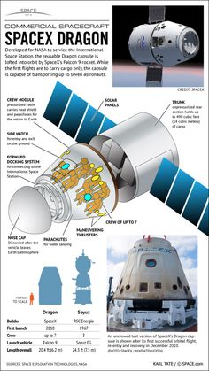 SpaceX Dragon Space Capsule Infographic - developed by NASA to service the International Space Station, it is designed for commercial use and can carry several passengers and cargo Cosmos, Space Exploration Technologies, Spacex Dragon, Kerbal Space Program, Nasa Space Program, Space Race, Space And Astronomy, Astronomy Facts, International Space Station