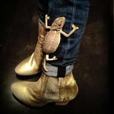 Leon mon cameleon et mes golden boots.....