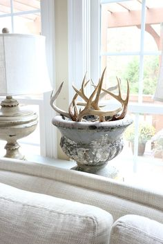 Antler sheds fill an old chippy concrete urn for added texture and interest