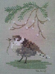 Çarpı İşi Kuş Desenleri ~ Güzel bir mola