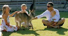 Feeding the Kangaroo Best Family Vacations, Visit Australia, World Heritage Sites, Luxury Travel, Kangaroo, Something To Do, Have Fun, National Parks, Wildlife