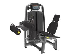 Evolution Fitness Evolution, Fitness, Decor, Fitness Equipment, Preventive Maintenance, Bending, Routine, Exercises, Decoration
