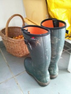 Aigle Parcours 2 Outlast -- the best wellington boots in the world. Wellington Boot, Rubber Rain Boots, Wildlife, Cool Stuff, Shoes, Cool Things, Shoes Outlet, Shoe, Footwear